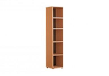 Шкаф для документов «Директор» узкий открытый